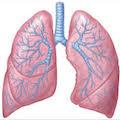 Пациентам, страдающим от болезней легких, скоро не нужна будет биопсия