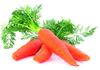 Бета-каротин — предшественник витамина A