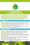 СКИНФУД листовка: Натуральная косметика на основе экзотических ингредиентов