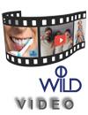 Видео трансляция семинара-презентации по средствам ухода за полостью рта «Доктор Вилд».
