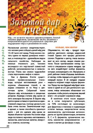 Золотой дар пчелы
