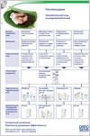 ДАДО СЕНС листовка: Правильный уход за кожей при различных заболеваниях