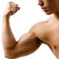 Кратковременного приема анаболиков хватает мышцам на десять лет
