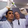 Треть крупномасштабных рандомизированных клинических испытаний не публикуется