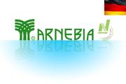 Витамины Арнебия
